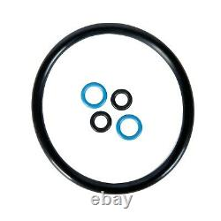 2 Pack 5 Gallon Ball Lock Kegs Reconditioned Homebrew Draft Beer + O-Ring Kit